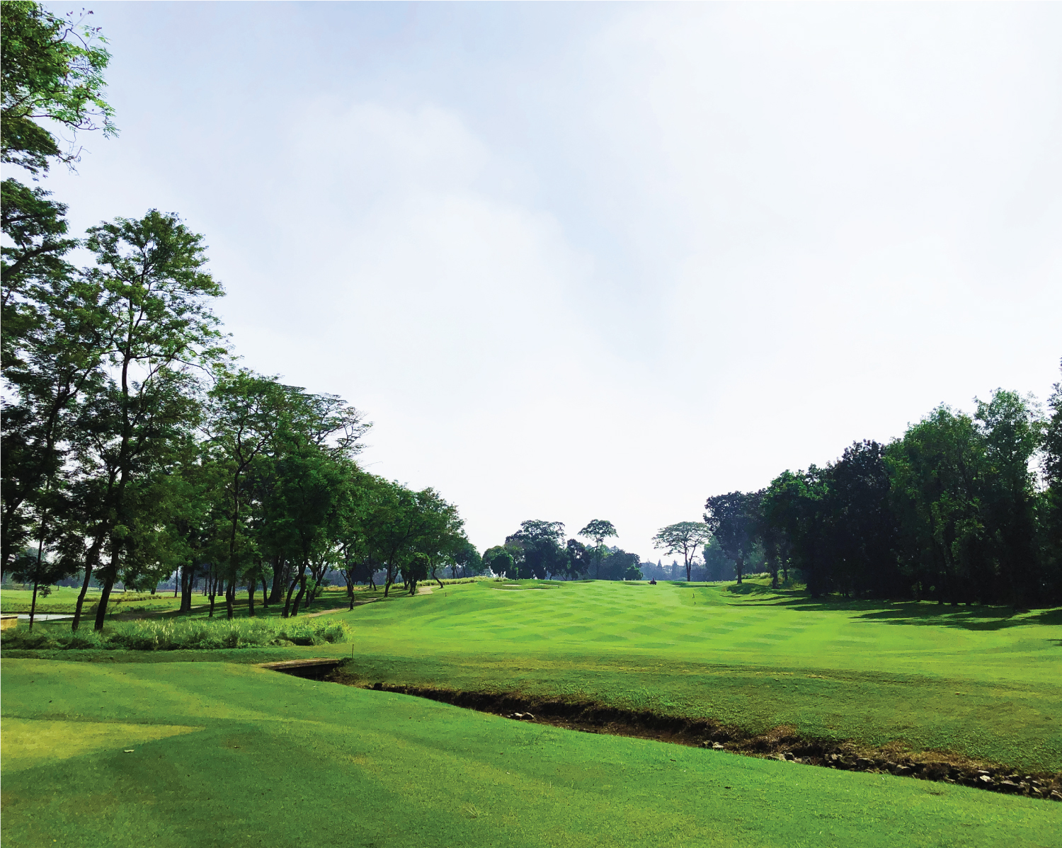 GOLF-COURSE-1-GREEN-COURSE