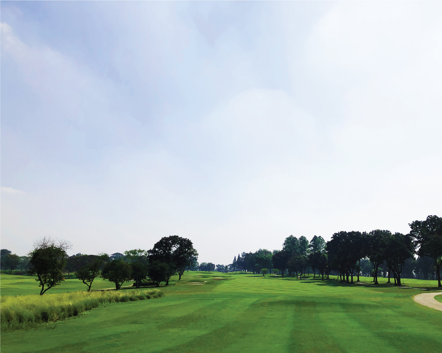 GOLF-COURSE-2-GREEN-COURSE